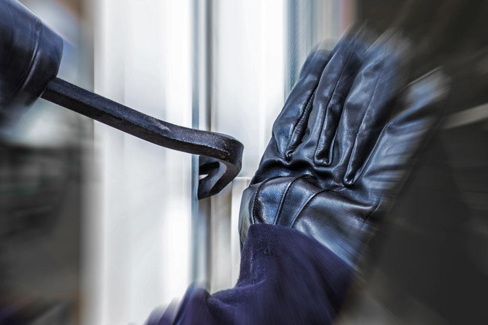 Burglary victims